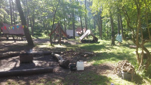 A Week In The Woods | Loepsie's Life