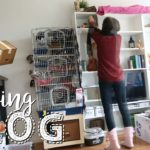 Getting Settled In | Moving Vlog #3